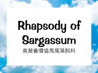 Rhapsody of Sargassum
